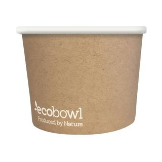 Disposable biodegradable plates
